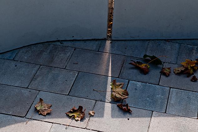 http://www.pogacia-photo.com/hu/files/gimgs/37_bakonyizsuzsadesigntermekfotozas29.jpg