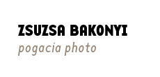 Bakonyi Zsuzsa Pogacia Photo